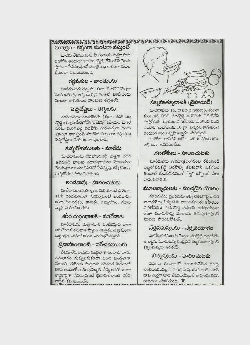 AYURVEDAM - ఆయుర్వేదం: January 2012