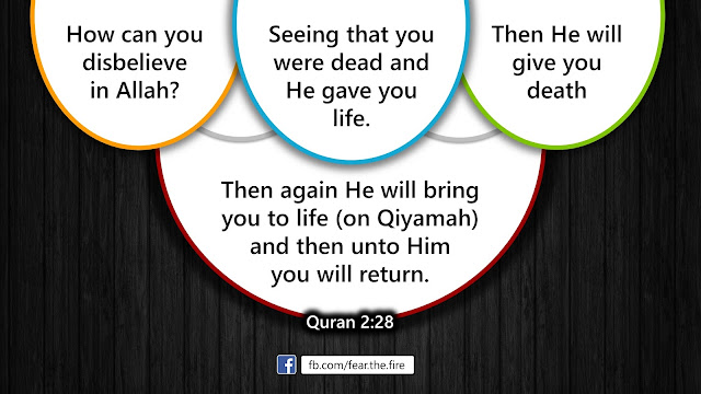 Pre to Re-Birth: The Four Forms of Life in Islam