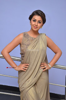 Nikki Galrani in Saree 001.JPG