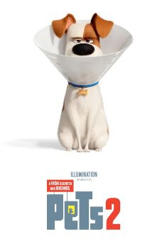 Pets: A Vida Secreta dos Bichos 2 Torrent - BluRay 720p/1080p/4K Dual Áudio