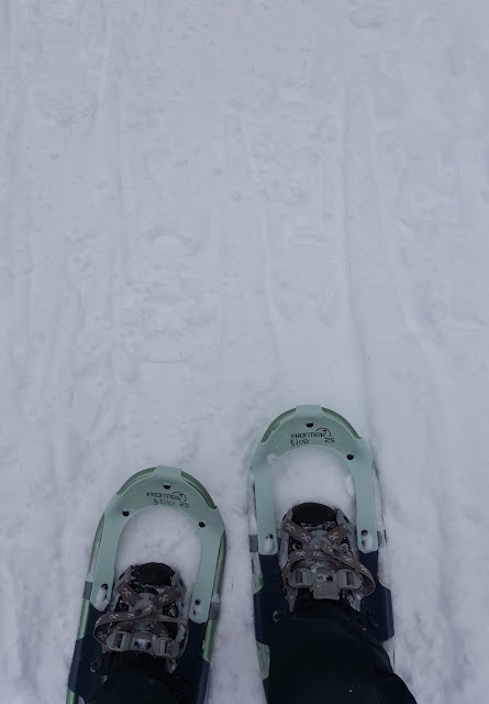 Favorite Snowshoeing spots in the City