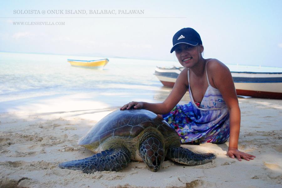 Onuk Island; Balabac; Palawan; Turtle; Soloista