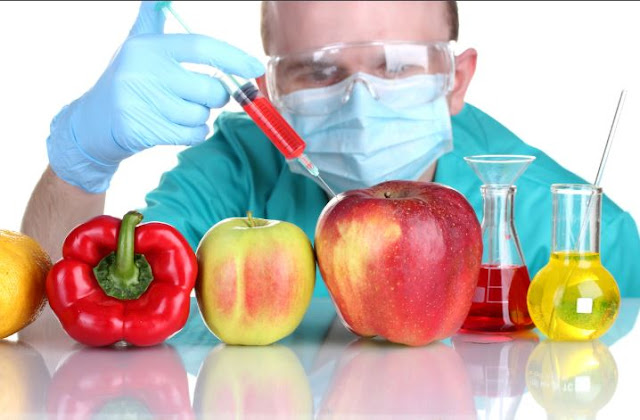 GM foods: the pros and cons.