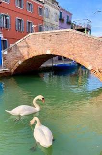 """Tại Ý, ngay sau lệnh phong tỏa, thiên nga và cá heo đã """"ngang nhiên"""" xuất hiện tại các con kênh ở Venice. Ngoài ra, nhiều đàn cá nhỏ cũng lần lượt """"đổ bộ"""" đến đây. Còn tại Rome, ở một số đài phun nước, nhiều chú vịt thảnh thơi """"thả mình"""" bơi lội trong dòng nước xanh mướt."""