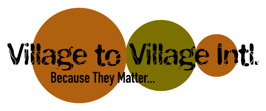 Village to Village Intl.