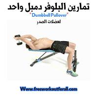 تمرين البلوفر دمبل واحد لعضلات الصدر