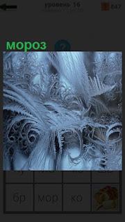 На окнах во время мороза появились необычные узоры