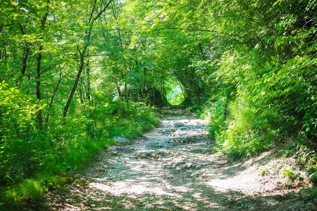 The hike to the Kozjak waterfall - Slovenia