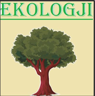 ekologji