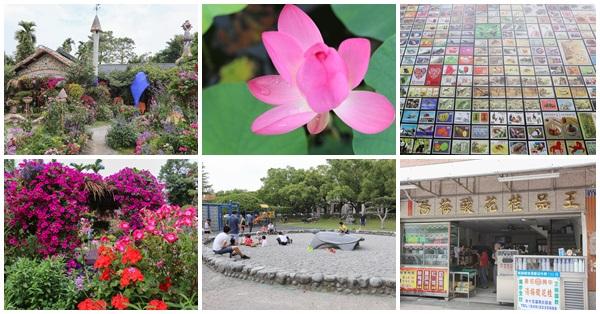南投市|中興新村荷花池|松濤園|郵票牆|光華公園(兒童公園)|王品桂花酸梅湯