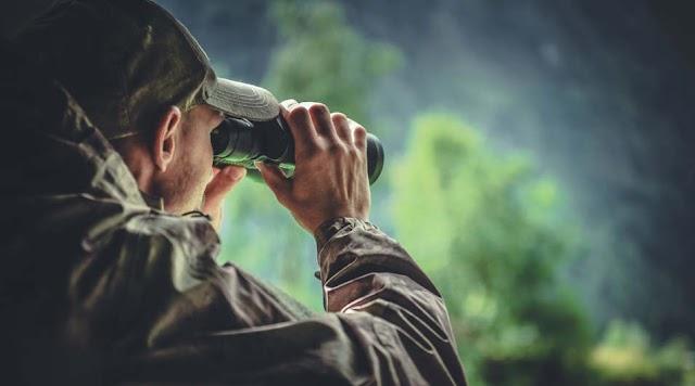 Egy vadász bejelentése alapján fogtak határsértőket Nyírábránynál