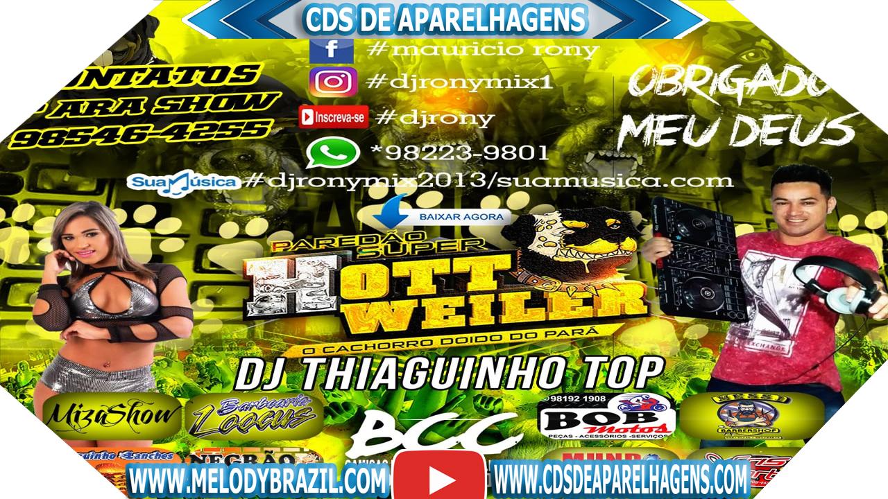 THIAGUINHO 2014 BAIXAR CD