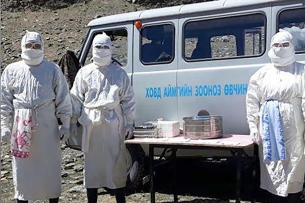 Black Death outbreak in Mongolia