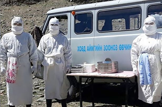 Health : Presumed 'Black Death' outbreak in Mongolia in the province of Khovd.