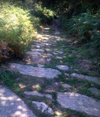 Tramo de la vía entre Pesquera y Bárcena de Pie de Concha
