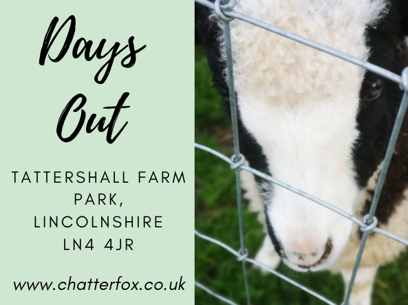 Close up image of a black and white goat. Alongside a title that reads 'travel and days out, tattershall farm park lincolnshire, LN4 4JR www.chatterfox.co.uk