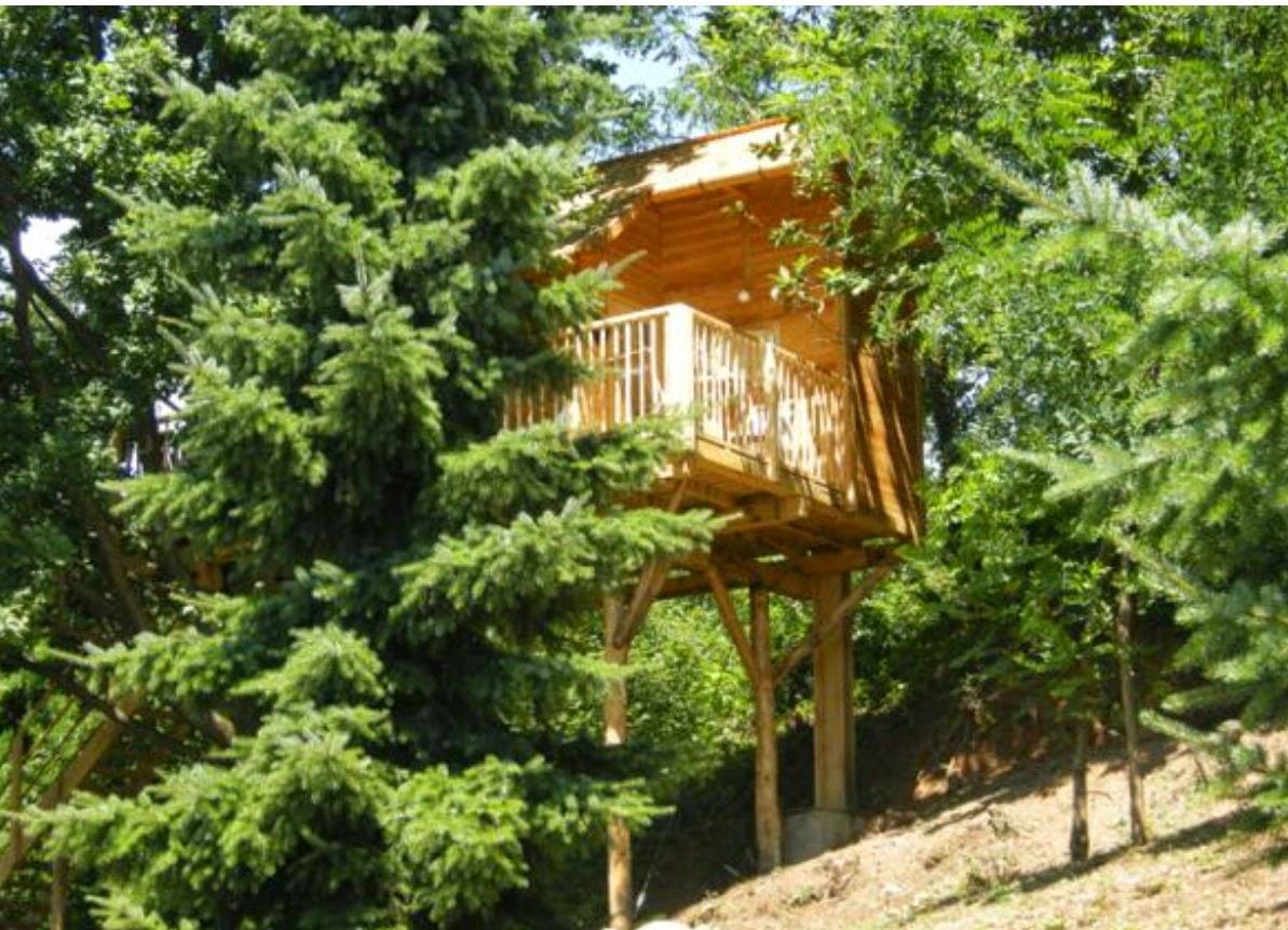 Dormire in una casa sull\'albero: 5 proposte bellissime in ...