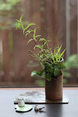 筒型で縁が切り取られた形の鉢に入ったヒトツバショウマなどの山野草盆栽とカエルの置物