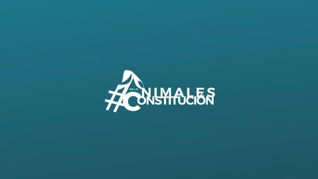 AnimalesEnLaConstitución