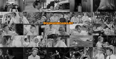 La noche de la iguana (1964) The Night of the Iguana - Descargar - Capturas
