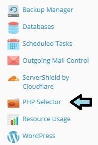 Tampilan Plesk PHP Selector