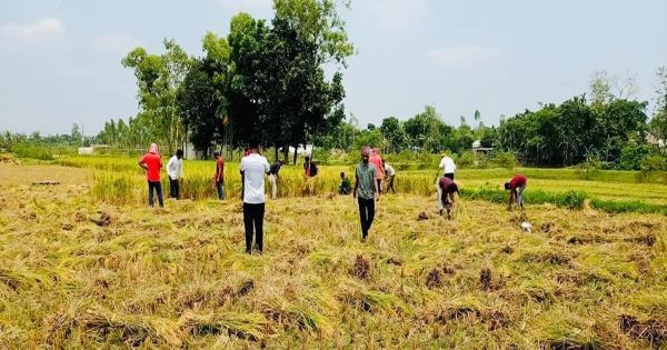 Chhatra League is helping the farmers in Covid situation