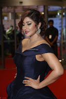 Payal Ghosh aka Harika in Dark Blue Deep Neck Sleeveless Gown at 64th Jio Filmfare Awards South 2017 ~  Exclusive 146.JPG
