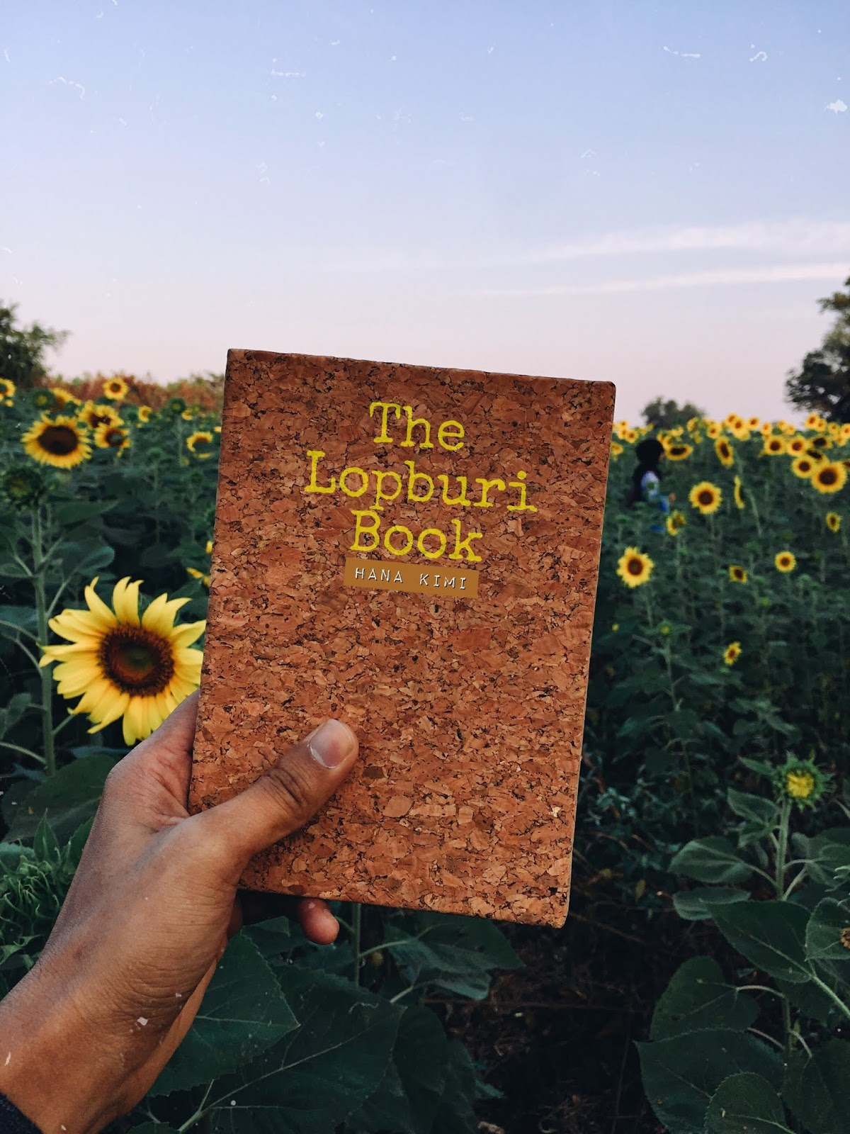The Lopburi Book | Pengalaman Trip Backpacking di Lopburi Thailand