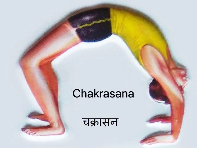 चक्रासन - चक्रासन योग की विधि, लाभ और सावधानी - Chakrasana in Hindi