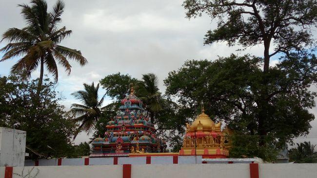 Sri Theneeswarar Temple Towers