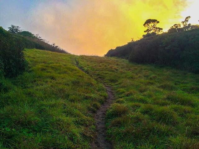 රාවණාගේ කරත්තය ගමන් කළ - චැරියට් පාත් 🎍🌿🌱 (Chariot Path) - Your Choice Way