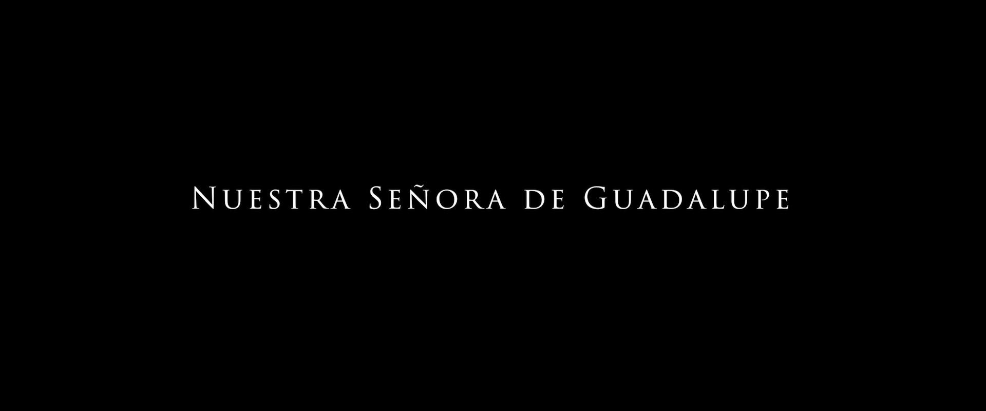 Nuestra Señora de Guadalupe (2020) 1080p WEB-DL Latino