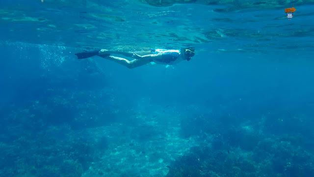 Menjangang (Pemuteran) - Bali