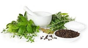 Image Pengobatan Kencing Nanah Herbal