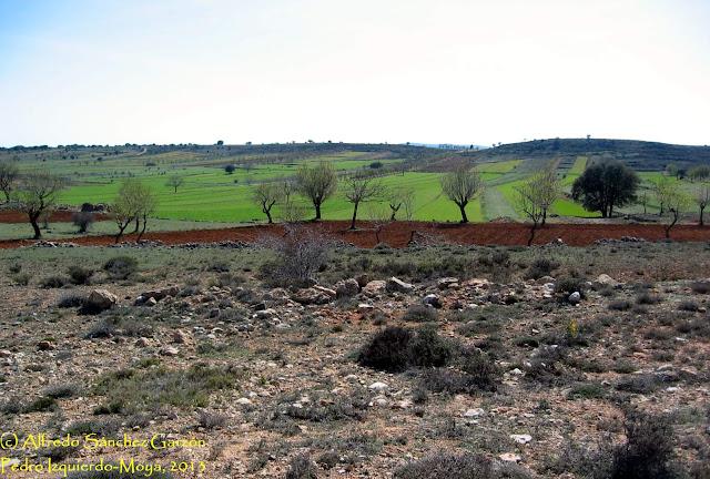 pedro-izquierdo-moya-cuenca-campos