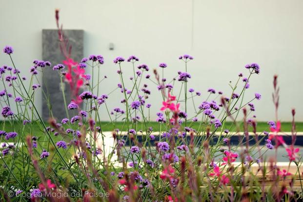 diseño jardines, mejores imágenes jardines, jardines pequeños, jardines con piscina, jardines naturales