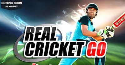 Real Cricket Go Details