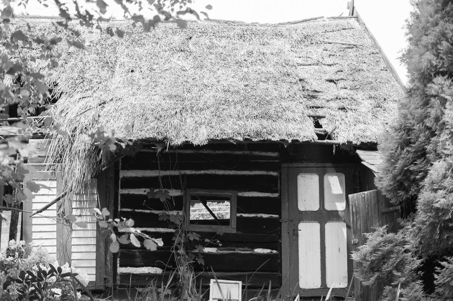 Blog + Fotografie by it's me! | fim.works | SchwarzWeissBlick No 19 | Lost Places im Spreewald, Brandenburg | verfallenes Reeddach im Spreewald