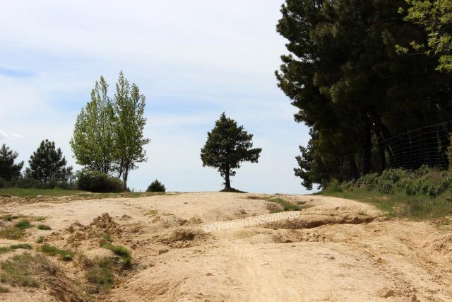 camino-de-santiago-madrid-senda-manzanares-el-real