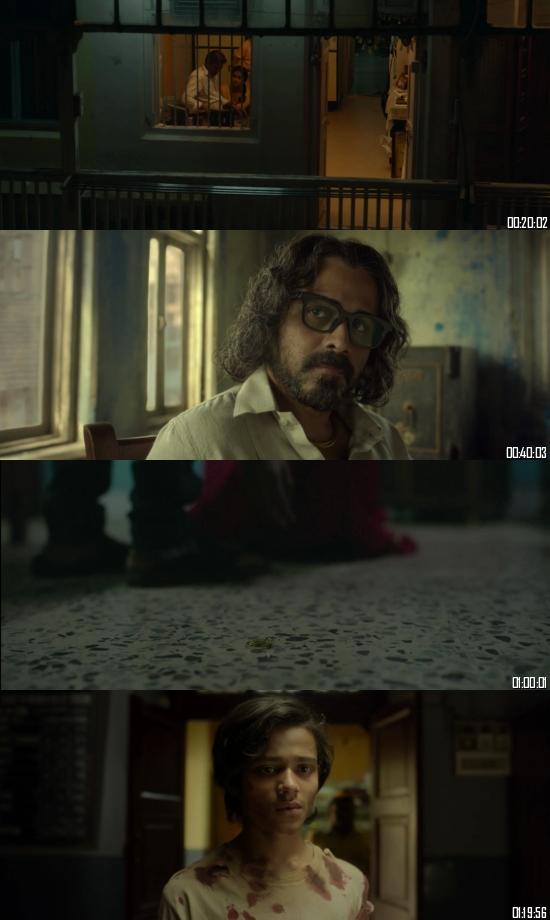 Harami 2020 Hindi 720p 480p WEB-DL x264 Full Movie