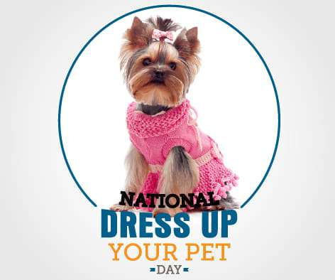 National Dress Up Your Pet Day Wishes pics free download