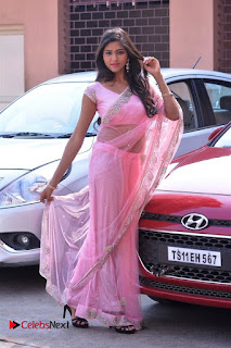 Telugu Actress Shalu Chourasiya Stills in Cute Pink Saree at Pochampally IKAT Art Mela  0010.jpg