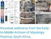 http://sciencythoughts.blogspot.co.uk/2015/06/microbial-sediments-from-early-to.html