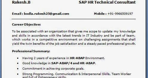 resume sap apo consultant sap pp resume xxxx x it consulting sap