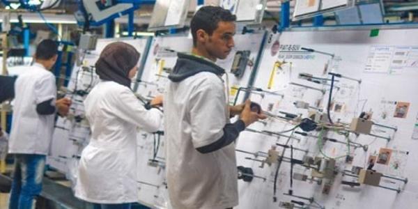مطلوب 135 عامل وعاملة بكل من طنجة، الدار البيضاء، مديونة والصخيرات تمارة