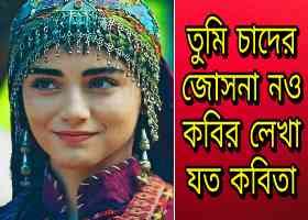 Tumi Chader Jochona Nou (Cover) Bangla Mp3 Song Lyrics download