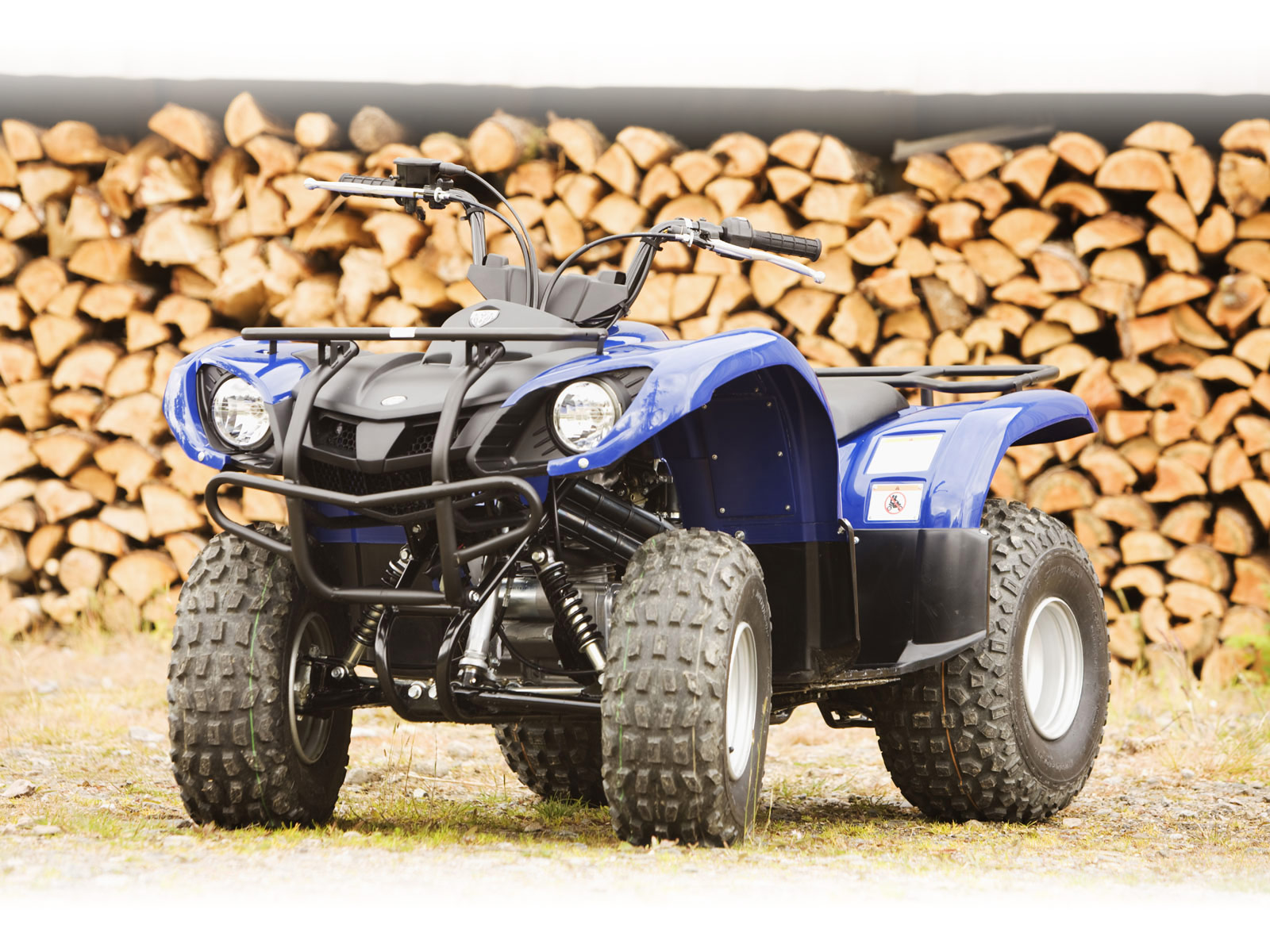 Yamaha Grizzly 125 Wiring Diagram | Online Wiring Diagram