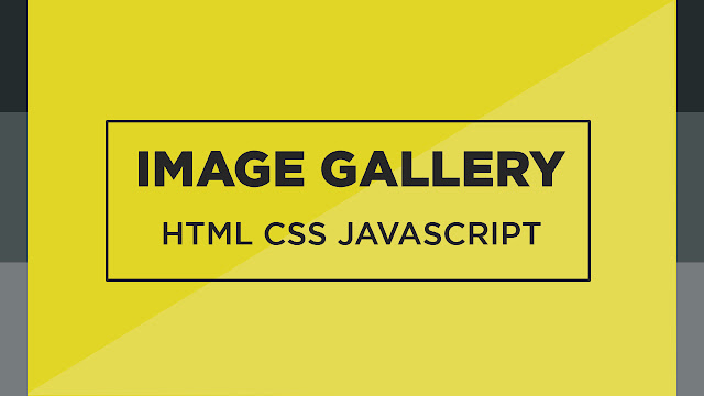 Awesome Image Gallery using HTML CSS and Javascript