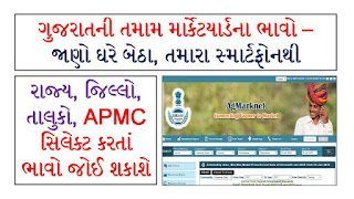 APMC TODAYS REPORT