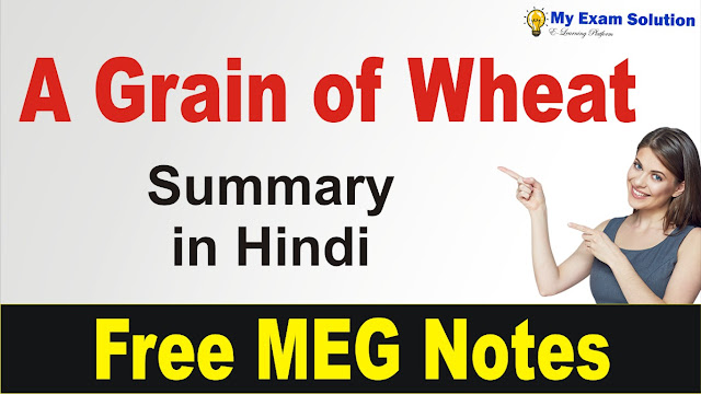 my exam solution, exam solution, english literature, english studies in india, meg 08, ignou meg notes